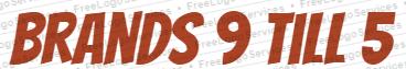 Brands 9 till 5 logo